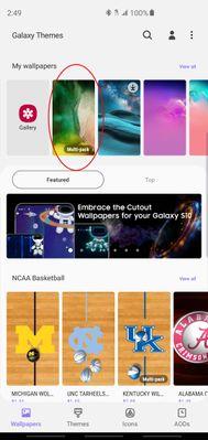 Screenshot_20190321-144936_Galaxy Themes.jpg