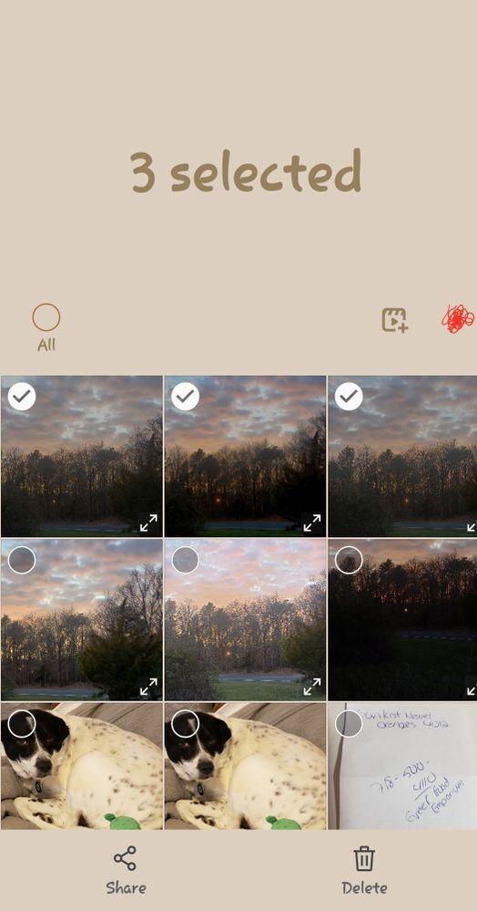 Screenshot_20200405-132127_Gallery.jpg
